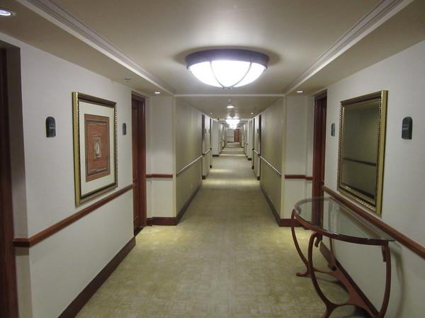IMG_8293廊下.jpg